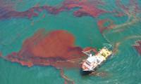 Denizi kirletmenin cezası 1 milyon 355 bin lira