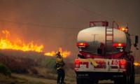 Rusya'da orman yangını!