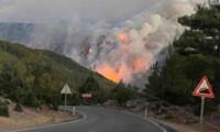 Yangınlarda son durum... Üç bakandan ortak açıklama!