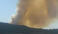 Adana'da orman yangını! Havadan karadan müdahale ediliyor