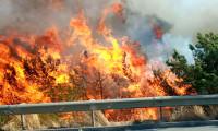 Yangın bölgelerine aktarılan kaynak 39 milyon TL'ye ulaştı
