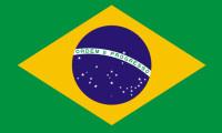 Brezilya Merkez Bankası gösterge faizini 100 baz puan artırdı