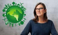 Yıldız teknoloji yatırımcısı ESG fonu kuruyor
