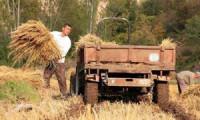 Hükümetten tarıma 10 milyar TL destek