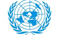 BM'den Irak'a operasyon kararı
