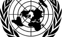 BM yetkilisi Kırım'da kaçırılmak istendi