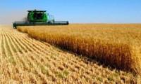 Çiftçi kredi borcuna sadık