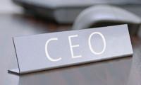 CEO'lar seçimlerden ne bekliyor