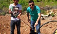 Su arayan çiftçi petrol buldu