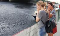 İstanbul'un göbeğinde korkutan görüntü