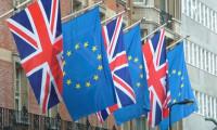 Schaeuble: İngiltere AB'den çıkarsa ağlarız