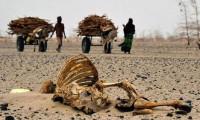 İklim değişikliği yüz binleri öldürecek