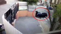 Fren yerine gaza basan öğretmen öğrencilere çarptı