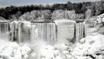 Niagara Şelalesi dondu