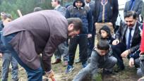 Çorum'daki ağaç dikme etkinliği Guinness Rekorlar kitabına girdi