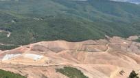 Kaz Dağları'nda binlerce ağaç kesen o şirketin faaliyeti durduruldu
