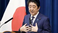Japonya'da kriz çıkaran sakura partisi hakkında yeni gelişme