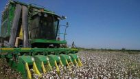 Tarımsal desteğe 2020'de 22 milyar lira ayrıldı