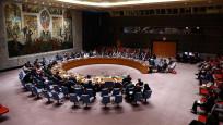 ABD, Birleşmiş Milletler Güvenlik Konseyi'ni toplantıya çağırdı