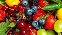 Tek besinle yaşayabilir miyiz?