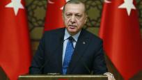 Cumhurbaşkanı Erdoğan'ın veto ettiği termik santral maddesi metinden çıkarılacak
