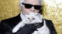 Lagerfeld'in 200 milyon dolarlık mirası kedisine kalabilir