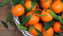 Rusya 25 ton mandalinayı geri çevirdi