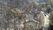 Muğla'daki orman yangını kontrol altında