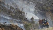 Avustralya'nın Queensland eyaletindeki yangınlarda onlarca kanguru öldü