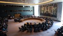 Rusya ve Çin'den BMGK'nın İdlib'de ateşkes tasarısına veto