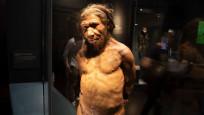 Bilim insanları: Neandertaller yüzebiliyor ve dalabiliyordu
