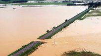 Brezilya'da sel ve heyelanlarda ölenlerin sayısı 30'a çıktı