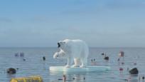Arktik Buz Denizi zamanı gelmesine rağmen hala donmadı