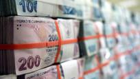 Hazine ve Maliye Bakanlığı iç borçlanma stratejisini açıkladı