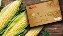 UBS mısırdan kredi kartı üretti