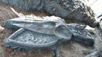 Tayland'da 5 bin yıllık balina iskeleti bulundu