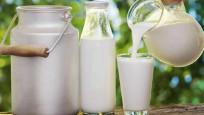 Keçi sütü içerisinde korona virüse karşı etkili protein keşfedildi