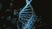 Bilim insanları 'anahtar gen'i keşfetti