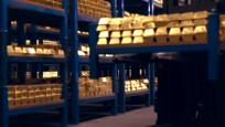 Özel izinle İngiltere Merkez Bankası'nın altın kasasına girdi