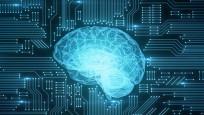 Hafızayı ve zekayı geliştiren besinler