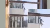Komşusu gizli kameraya aldı... Bu görüntüler dünyayı salladı!