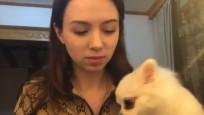 Köpeği uçağa alınmadığı için Çin'de kaldı