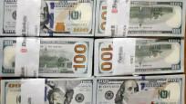 Merkez'in brüt döviz rezervleri 2.5 milyar dolar azaldı