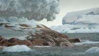 Antarktika'da ada keşfedildi