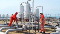 Doğal gaz ithalatında Rusya'nın ağırlığı azalıyor