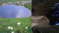 Dipsiz Göl eski haline döndü