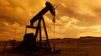 Brent petrolün varili 43.08dolar