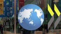 OECD bölgesinde istihdam düştü
