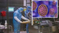 Çin'de şimdi de 'bunyavirüs' alarmı: 7 kişi hayatını kaybetti
