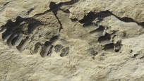 Suudi Arabistan'da 120 bin yıllık insan ayak izleri ortaya çıkarıldı